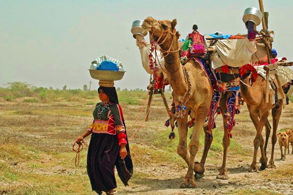 Rabari Tribe Village People