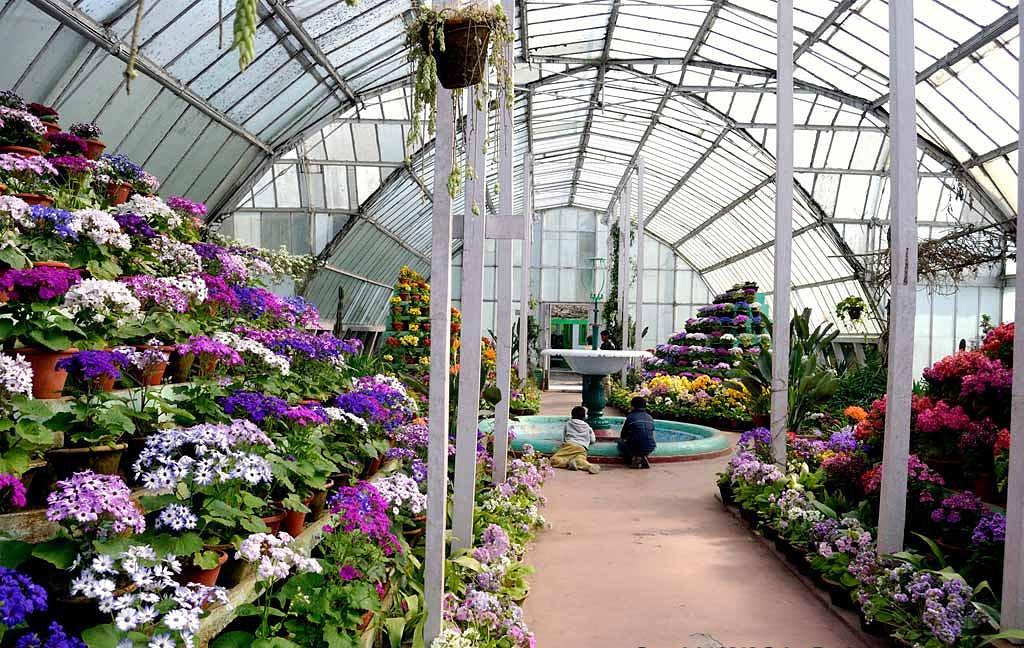 The Lloyd Botanical Gardens