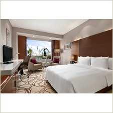 PICCADILY HOTEL JANAK PURI