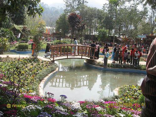 The Saramasa Garden