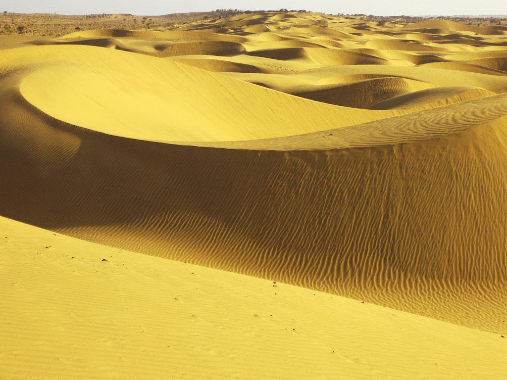 Jaisalmer Sand Dunes