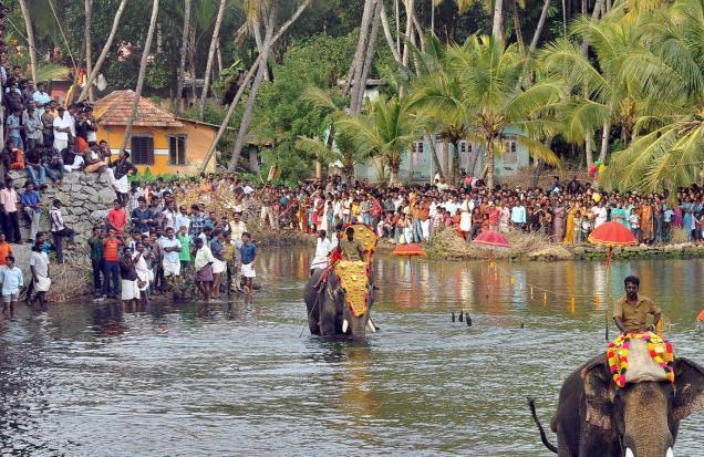 Kollam Elephant festival