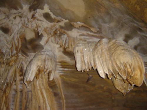 Kanger National Park2
