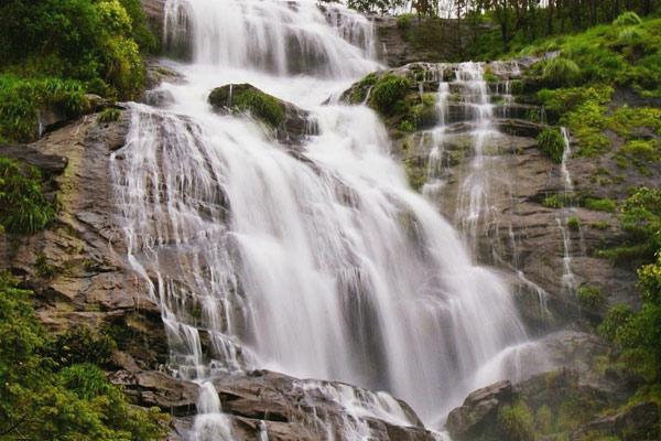 Nayamakad Waterfal Munnar