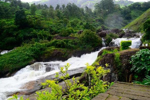 Attukal Waterfall Munnar