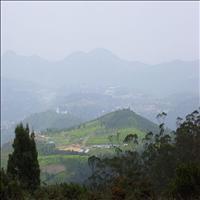 The Dodabetta Peak