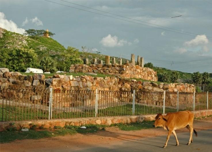 The Ajatshatru Fort