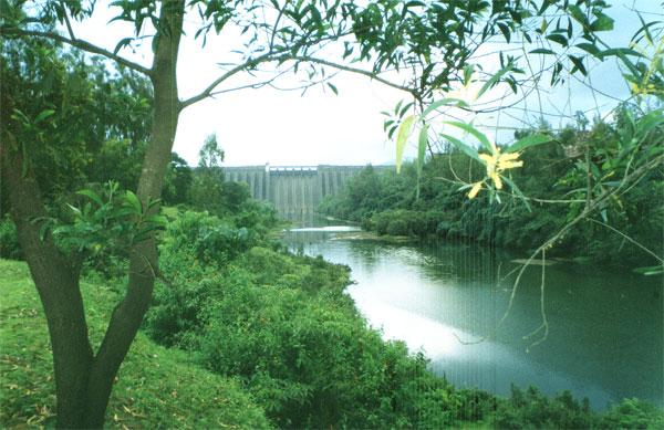 The Koyna dam