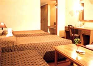 LOTUS NIKKO HOTEL