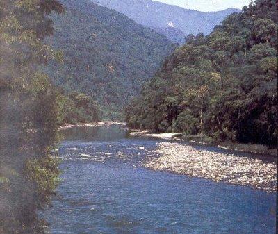 Bhalukpung