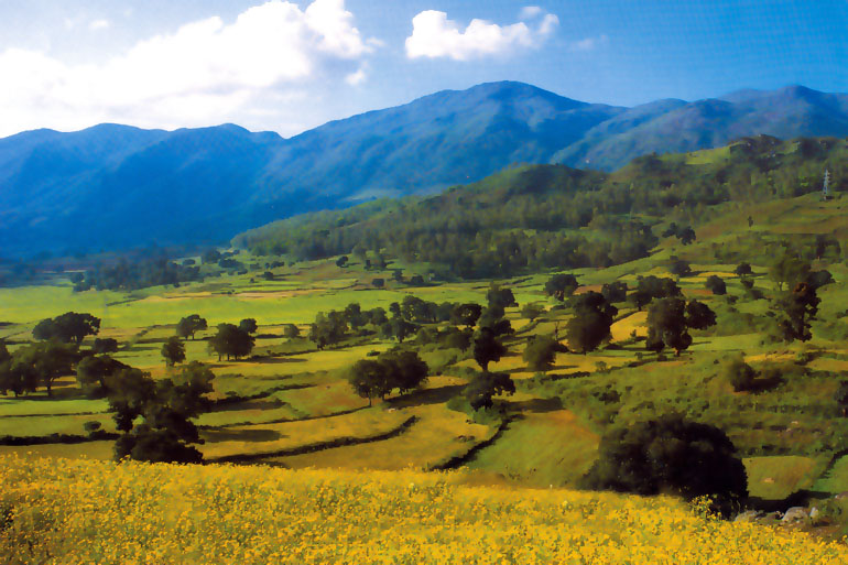 The Araku valley
